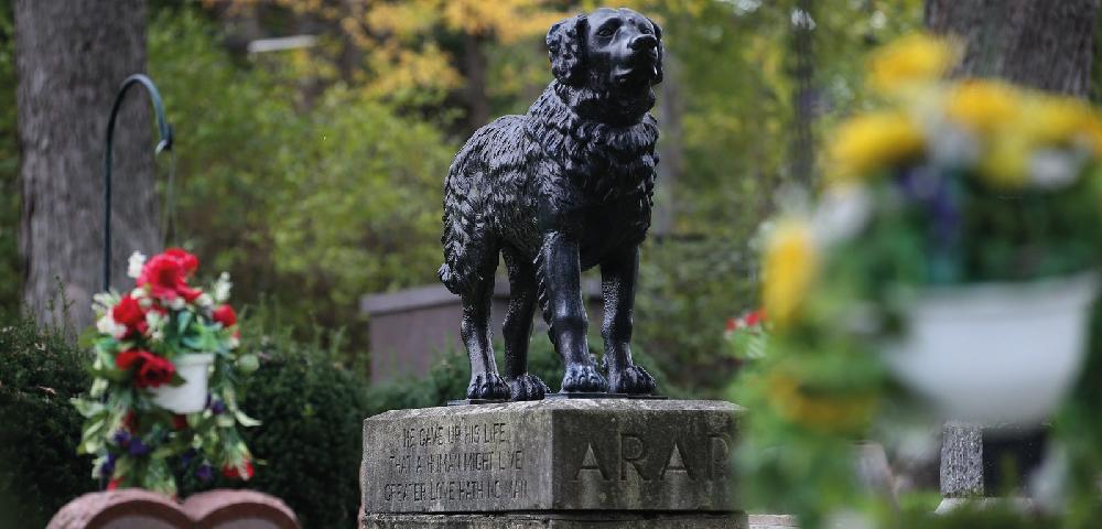 funerale per cani - monumento funebre