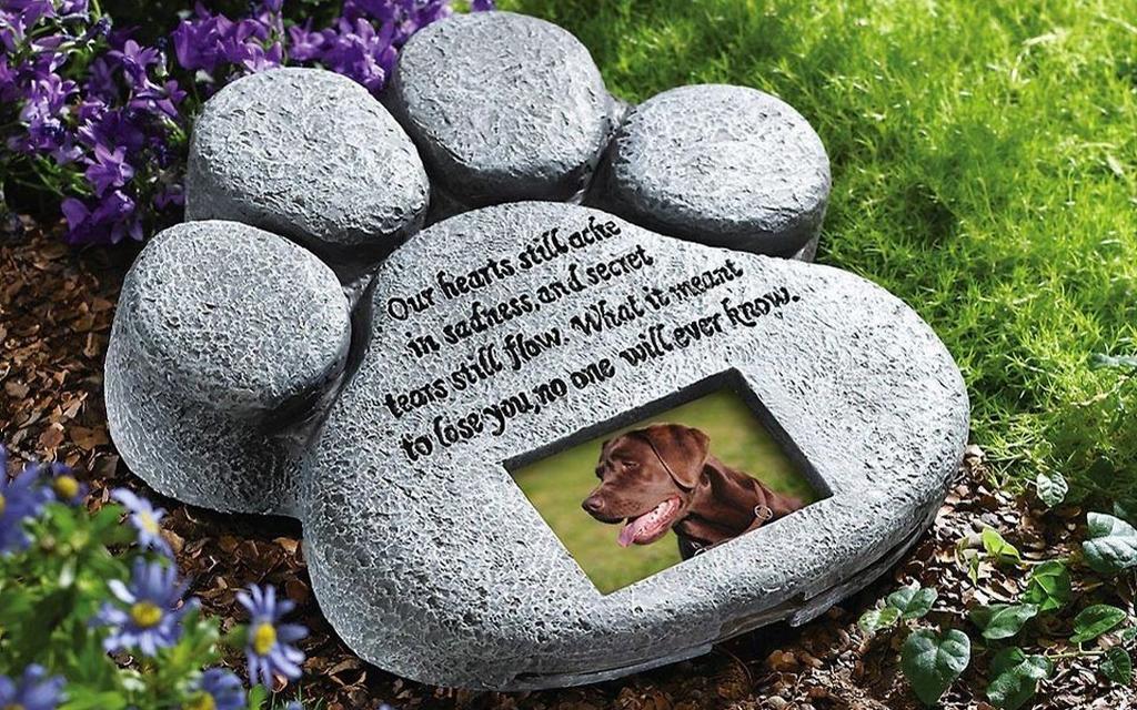 loculo per cane